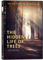 Hidden Life of Trees - Hidden Life Of Trees