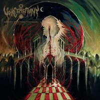 Voidceremony - Entropic Reflections Continuum Dimensional Unravel