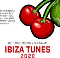 Ibiza Tunes 2020 Best Traxx From Magic / Various - Ibiza Tunes 2020: Best Traxx From Magic / Various