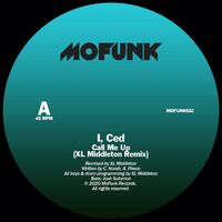 I Ced - Interpretations Remixes