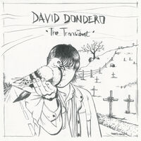 David Dondero - Transient (Two-Tone Black & White Vinyl) (Blk)