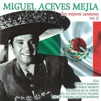 Miguel Mejia  Aceves - Sus Mejores Canciones Vol 2 (Spa)