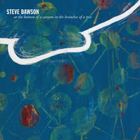 Steve Dawson - At The Bottom Of A Canyon In The Branches Of Tree