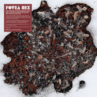 Fovea Hex - Salt Garden (Clear Vinyl) (W/Cd) [Clear Vinyl]