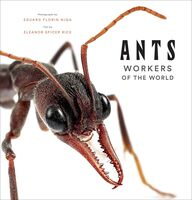 Eleanor Rice  Spicer / Niga,Eduard Florin - Ants (Hcvr)
