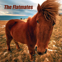Flatmates - Flatmates