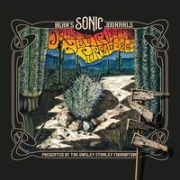 New Riders Of The Purple Sage - Bears Sonic Journals: Dawn Of The New Riders Of The Purple Sage