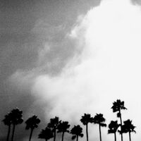 Richard Rose - Radiation Breeze