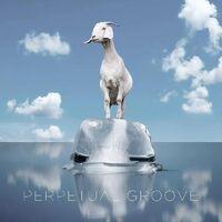 Perpetual Groove - Perpetual Groove