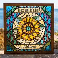 This Wild Life - Petaluma (Trans Pale Blue) (Blue) [Colored Vinyl]