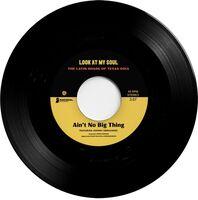 Johnny Hernandez / Black Pumas / Franklin,Kam - Ain't No Big Thing / Look At My Soul