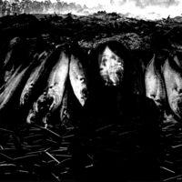 Suzie Stapleton - We Are The Plague (Uk)