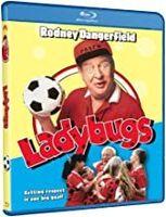 Ladybugs - Ladybugs