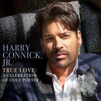 Harry Connick, Jr. - True Love: A Celebration Of Cole Porter [LP]