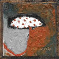 Narrow Head - 12th House Rock (Clear Vinyl) [Clear Vinyl]