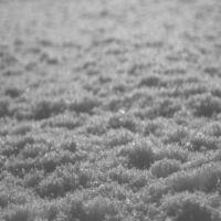 Paysage Dhiver - Schnee [Digipak]