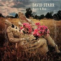 David Starr - Beauty & Ruin [LP]