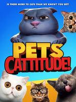 Kj Schrock - Pets: Cattitude