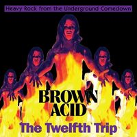 Brown Acid - The Twelfth Trip / Various - Brown Acid - The Twelfth Trip / Various