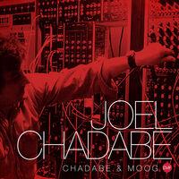 Joel Chadabe - Chadabe & Moog