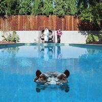 Sparks - Hippopotamus [Import]