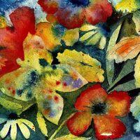 AdriAnne Lenker - Songs And Instrumentals [Cassette]