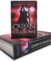 Maas, Sarah J - Queen of Shadows: A Throne of Glass Novel, Miniature CharacterCollection