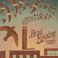 Brad Kolodner - Chimney Swifts