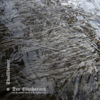 Der Blutharsch & Infinite Church Of The Leading - Collaboration