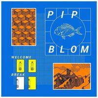 Pip Blom - Welcome Break