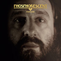 Phosphorescent - C'est La Vie [Clear LP]