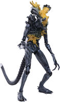 Hiya Toys - Hiya Toys - Aliens Headshot Alien Warrior PX 1/18 Scale Figure