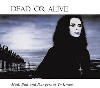 Dead Or Alive - Mad Bad & Dangerous To Know