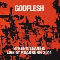 Godflesh - Streetcleaner Live At Roadburn 2011