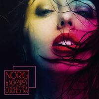 Norig & No Gypsy Orchestra / Various - Norig & No Gypsy Orchestra