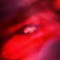 Saffronkeira / Siavash Amini - Faded Orbit [180 Gram] [Download Included]