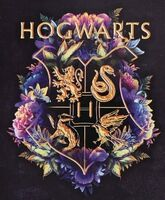Harry Potter Hogwarts Journal with Wand Pen - Harry Potter Hogwarts Journal with Wand Pen