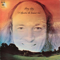 Terry Riley - Rainbow In Curved Air