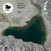 Christian Wallumrod Ensemble - Many (Spa)