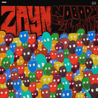 Zayn - Nobody Is Listening (Explicit)