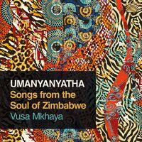 Vusa Mkhaya - Umanyanyatha / Various