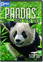 Nature: Pandas - Born to Be Wild - NATURE: Pandas - Born to Be Wild