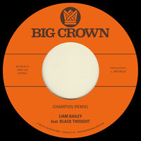 Liam Bailey - Champion (Remix) / Ugly Truth (Remix)