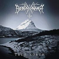 Borknagar - True North [Import Limited Edition]