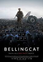 Claire Wardle - Bellingcat / (Ws)
