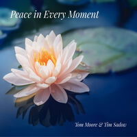 Tom Moore & Sadow,Tim - Peace In Every Moment [Digipak]