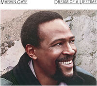 Marvin Gaye - Dream Of A Lifetime (Hol)