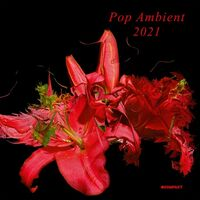 Pop Ambient 2021 / Various - Pop Ambient 2021 / Various