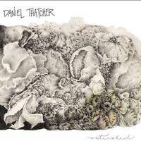 Daniel Thatcher - Waterwheel