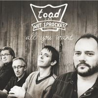 Toad The Wet Sprocket - All You Want